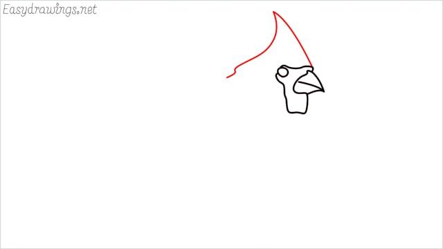 how to draw a cardinal bird step (3)