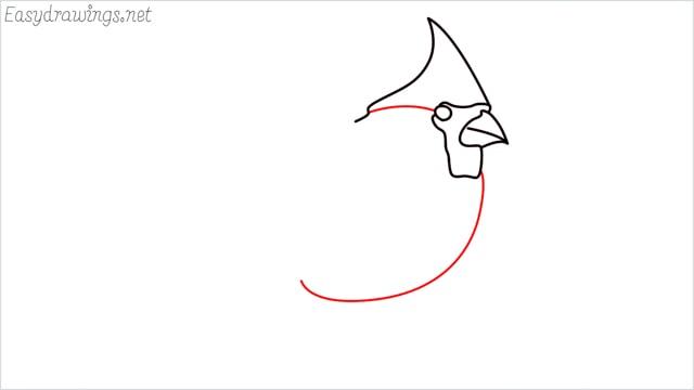 how to draw a cardinal bird step (4)
