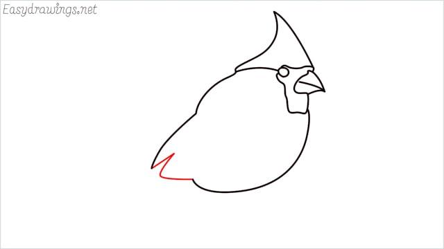 how to draw a cardinal bird step (6)