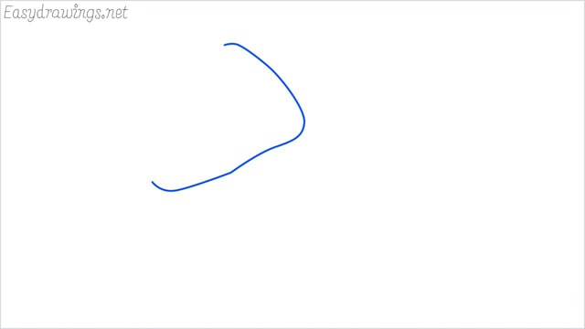 how to draw a clam shellfish step (1)