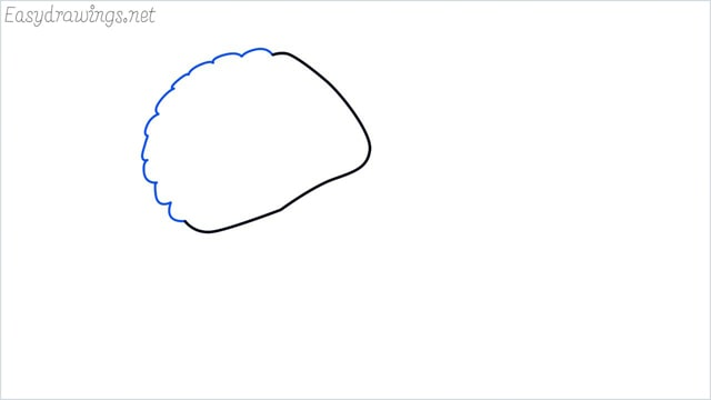 how to draw a clam shellfish step (2)