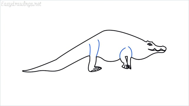 how to draw a crocodile step (10)
