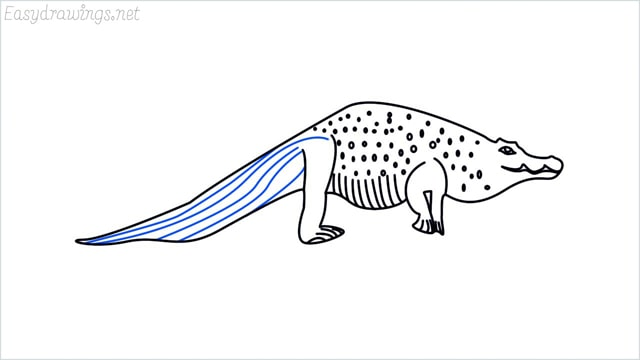how to draw a crocodile step (13)