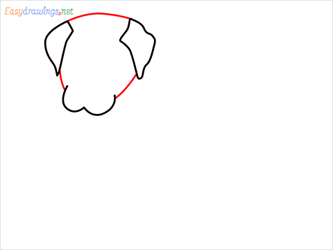 how to draw a cute dog sitting step (3)
