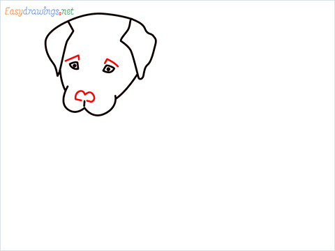 how to draw a cute dog sitting step (5)