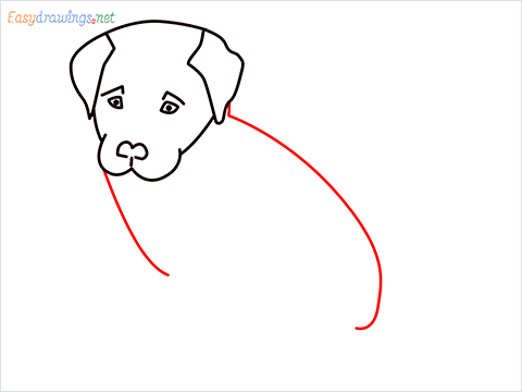 how to draw a cute dog sitting step (6)
