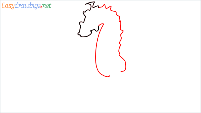 how to draw a cute seahorse Step (2)