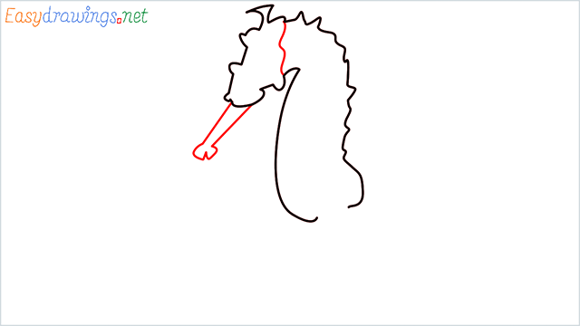 how to draw a cute seahorse Step (3)