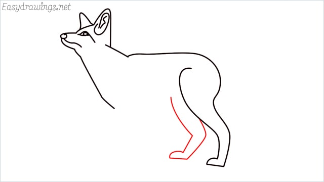 how to draw a fox step (10)