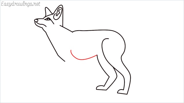 how to draw a fox step (11)
