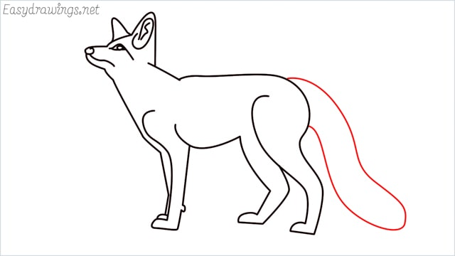 how to draw a fox step (14)