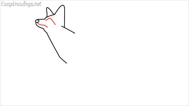 how to draw a fox step (5)