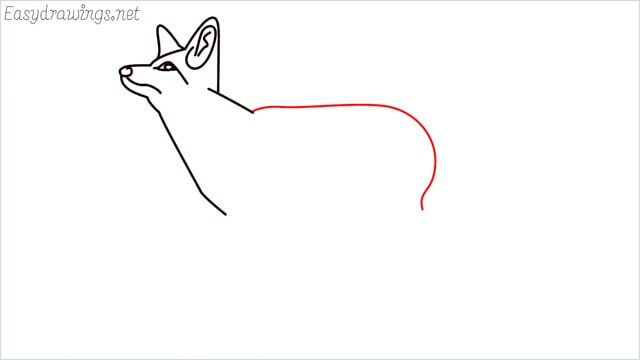 how to draw a fox step (8)