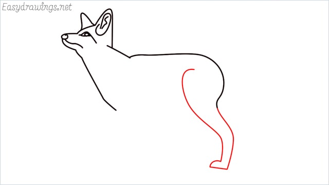 how to draw a fox step (9)