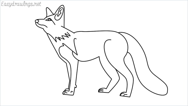 how to draw a fox step by step