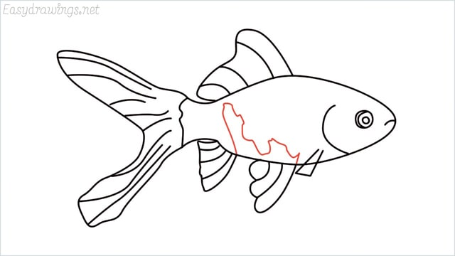 how to draw a goldfish step (10)