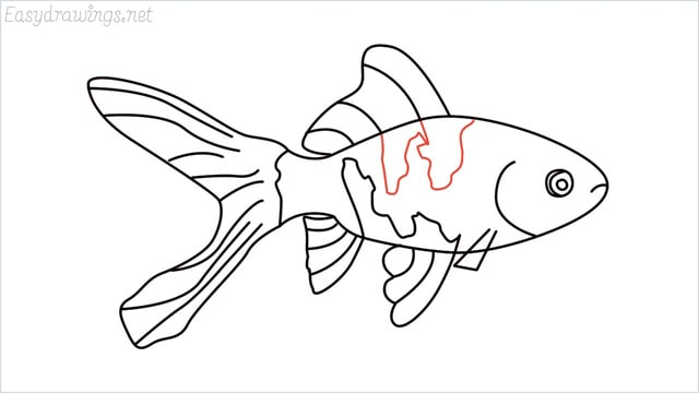 how to draw a goldfish step (11)