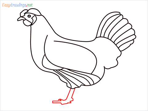 how to draw a mother hen Step (12)