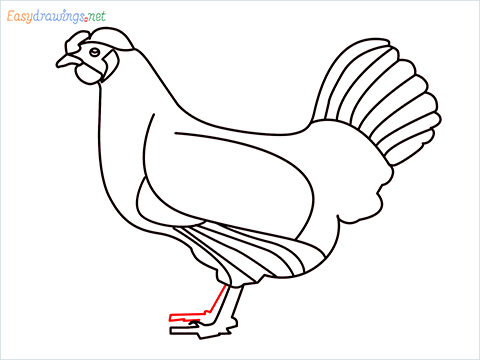how to draw a mother hen Step (13)