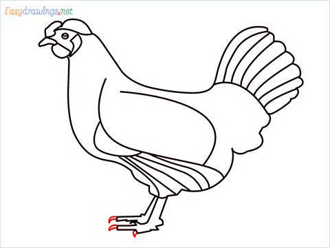 how to draw a mother hen Step (14)
