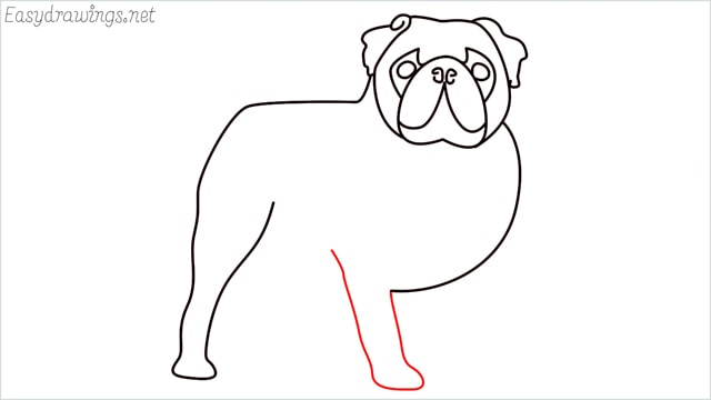 how to draw a pug step (10)