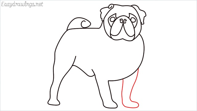 how to draw a pug step (12)