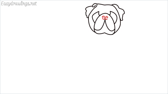 how to draw a pug step (6)