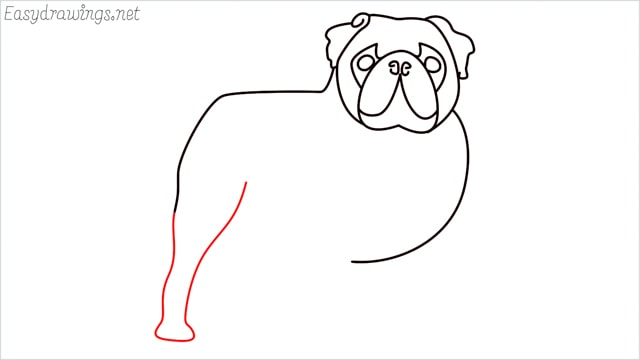 how to draw a pug step (9)