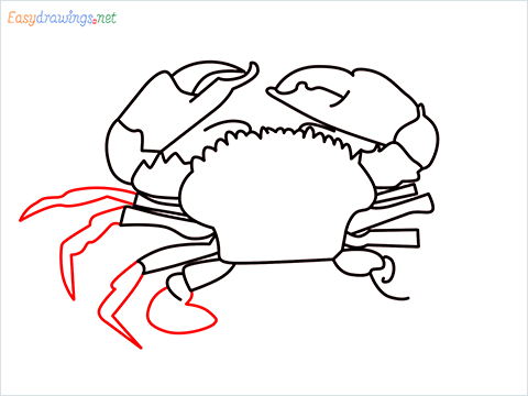 how to draw a realistic crab step (11)