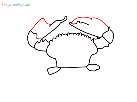 how to draw a realistic crab step (7)