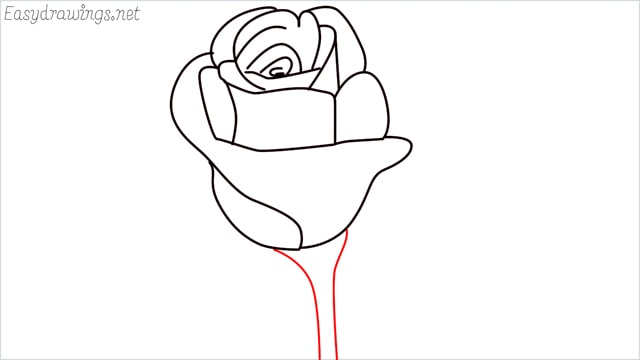 how to draw a rose step (9)