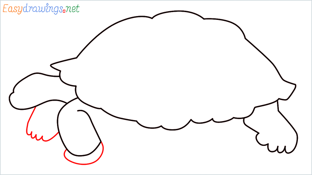 how to draw a sea turtle step (5)