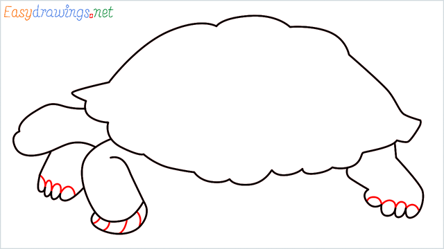 how to draw a sea turtle step (6)