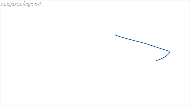 how to draw a shark step (1)
