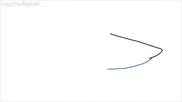how to draw a shark step (2)