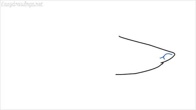 how to draw a shark step (3)