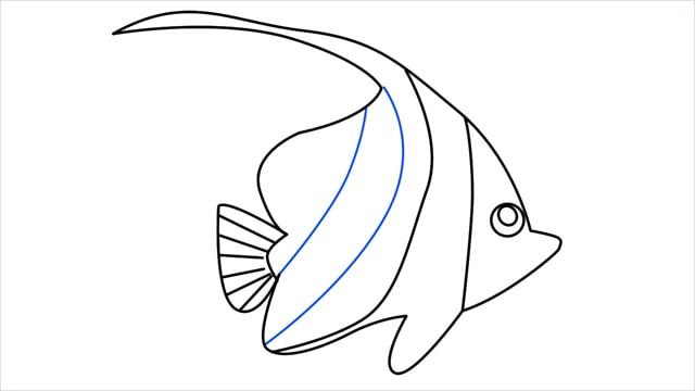how to draw a spadefish step (10)