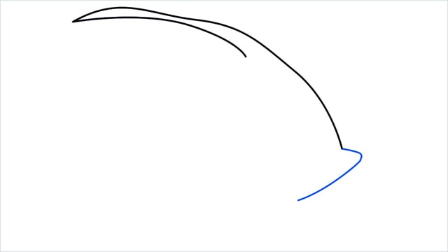 how to draw a spadefish step (3)