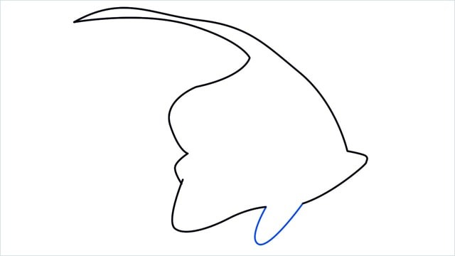 how to draw a spadefish step (5)