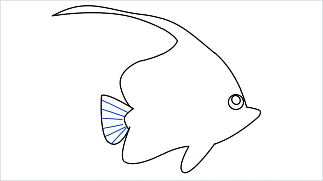 how to draw a spadefish step (8)