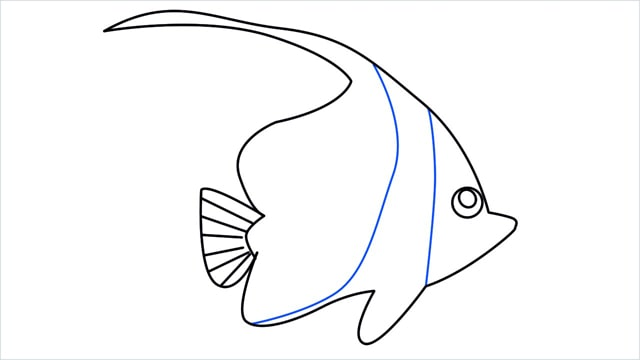 how to draw a spadefish step (9)