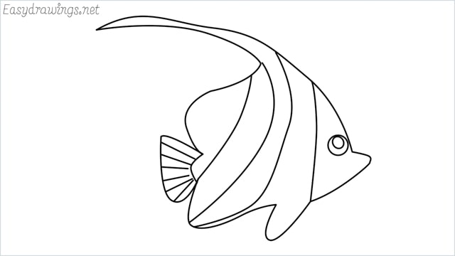 how to draw a spadefish