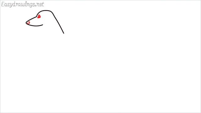 how to draw a suluki dog step (3)
