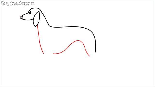 how to draw a suluki dog step (5)