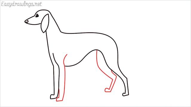 how to draw a suluki dog step (7)