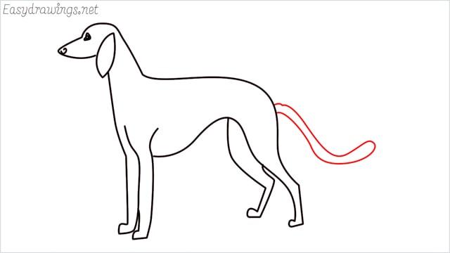 how to draw a suluki dog step (8)