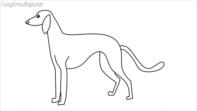 how to draw a suluki dog step by step