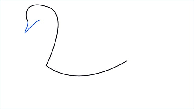 how to draw a swimming swan step (2)