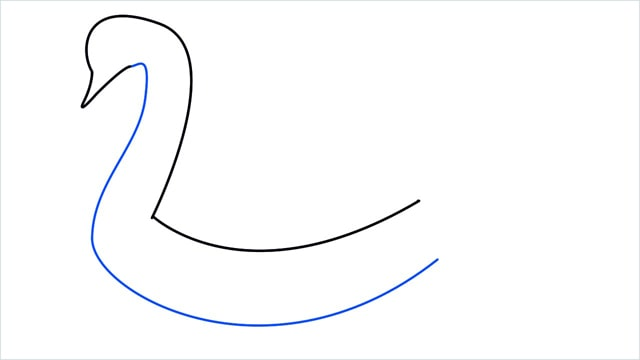 how to draw a swimming swan step (3)