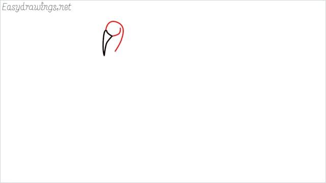 how to draw a turkey step (2)